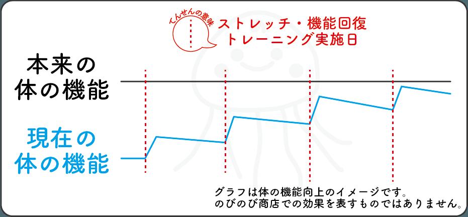 ストレッチの機能向上グラフ